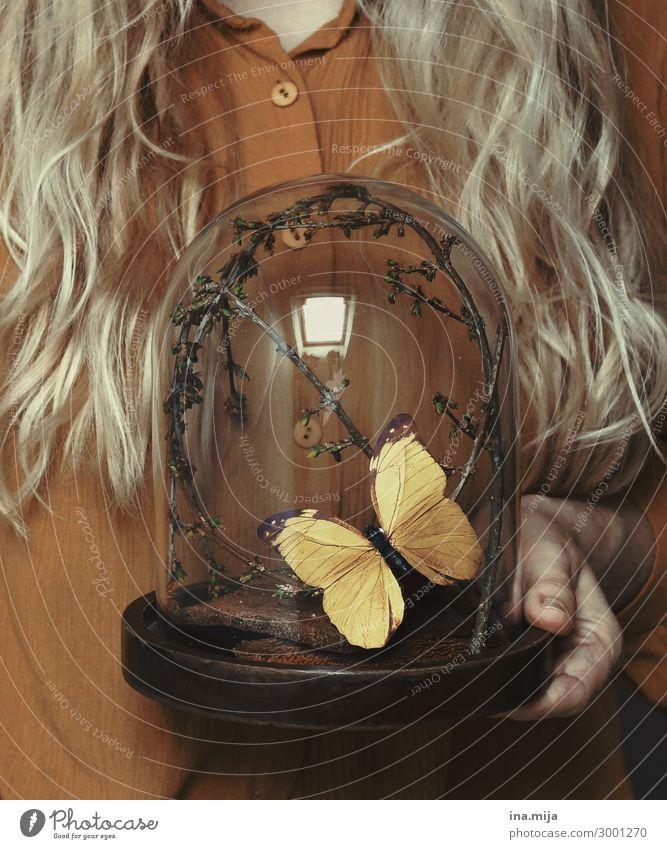 _ Mensch feminin Junge Frau Jugendliche Erwachsene Leben 1 18-30 Jahre 30-45 Jahre Haare & Frisuren blond langhaarig Locken Tier Wildtier Schmetterling Käfer