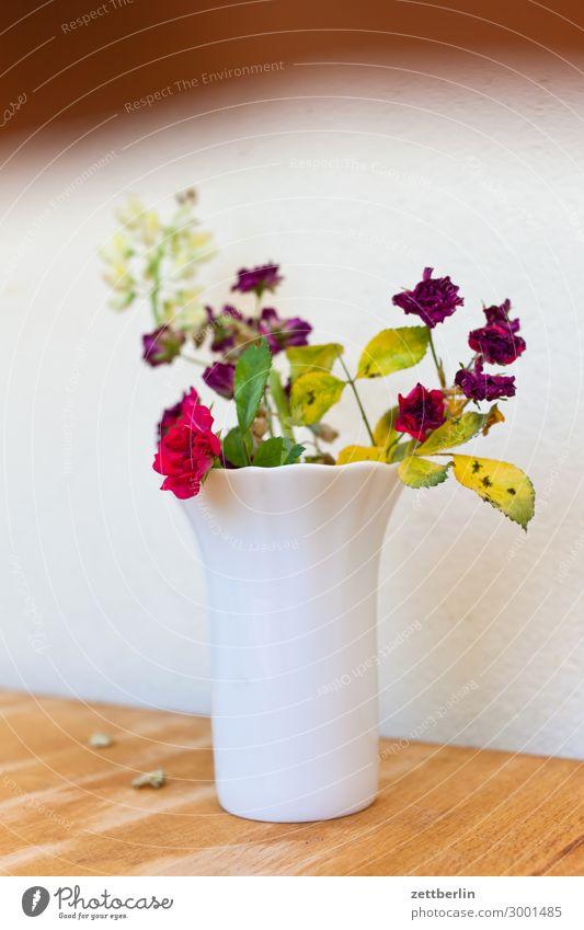 Blümchen Blume Blühend Blüte Garten Schrebergarten Kleingartenkolonie Menschenleer Natur Pflanze Sommer Textfreiraum Tiefenschärfe Vase Blumenstrauß