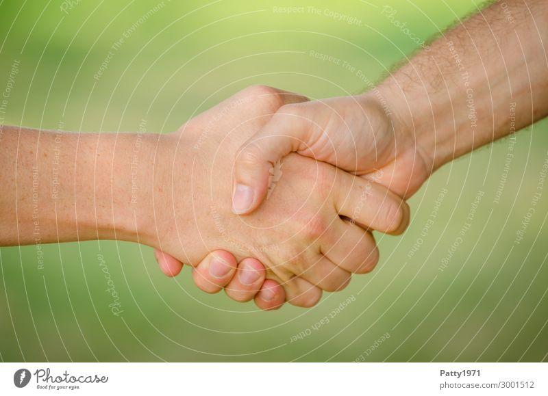 Handschlag Mensch Jugendliche Mann Junger Mann 18-30 Jahre Erwachsene Business Freundschaft Zufriedenheit maskulin Kommunizieren Kraft Erfolg Lebensfreude