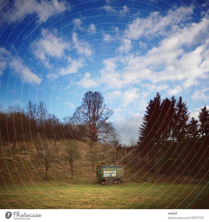 Hobbyimker Umwelt Natur Landschaft Pflanze Himmel Wolken Horizont Schönes Wetter Baum Gras Sträucher Imkerei Bienenstock Farbfoto Außenaufnahme Menschenleer