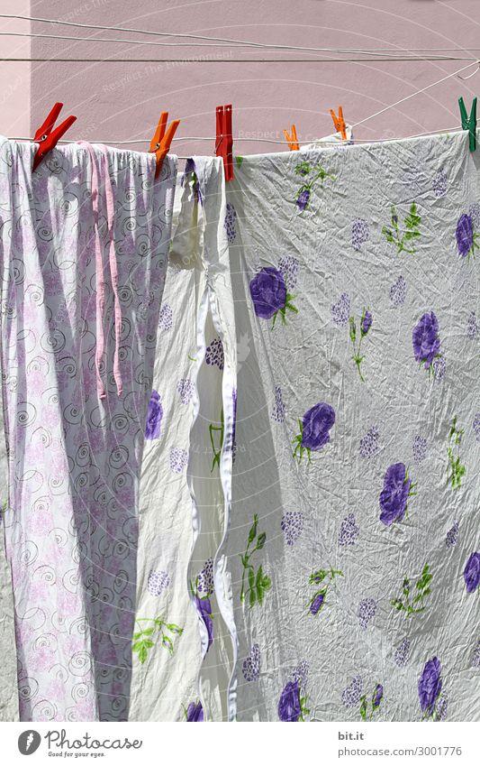 Luftig l Waschtag Häusliches Leben Bettwäsche trocken Stoff hängen Wäsche waschen trocknen Haushalt Wäscheleine Wäscheklammern Hausfrau Wäscheständer