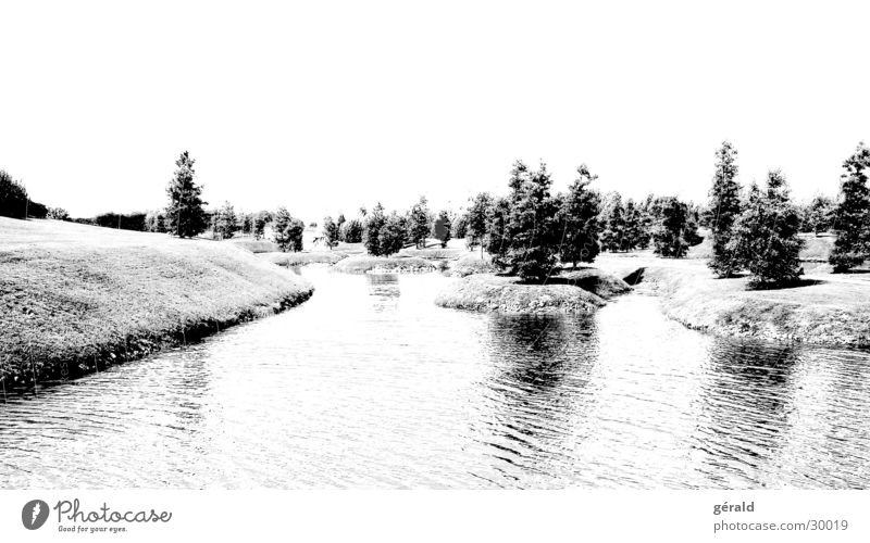 Schwart & Weiß Natur 5 Wasser weiß Baum Gras Garten grau See Insel Rasen Hügel Japan