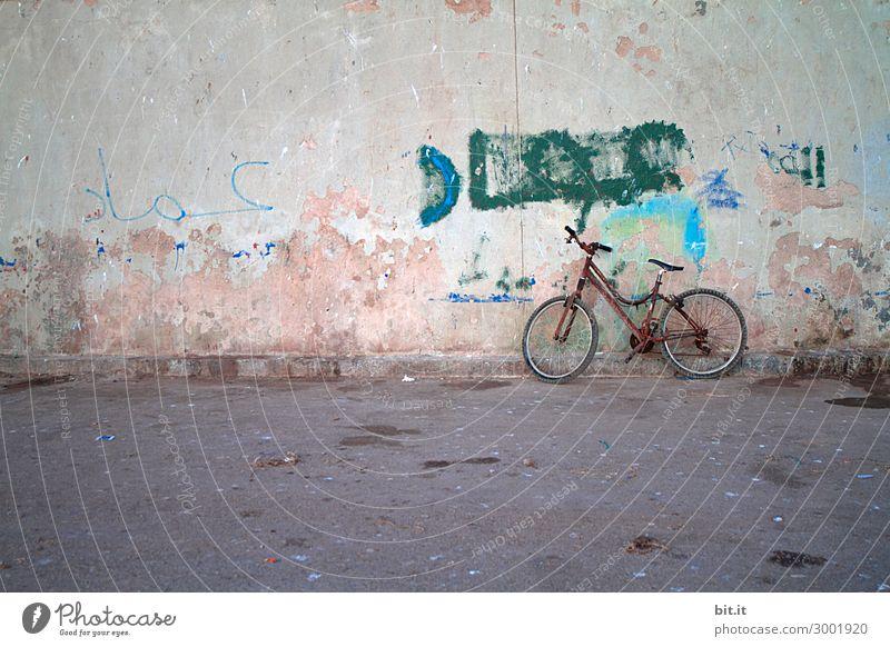 On the road again l altes Fahrrad mit Rost, lehnt an Mauer Ferien & Urlaub & Reisen Tourismus Ausflug Kunst Musik Wand Verkehr Verkehrsmittel Straße stehen