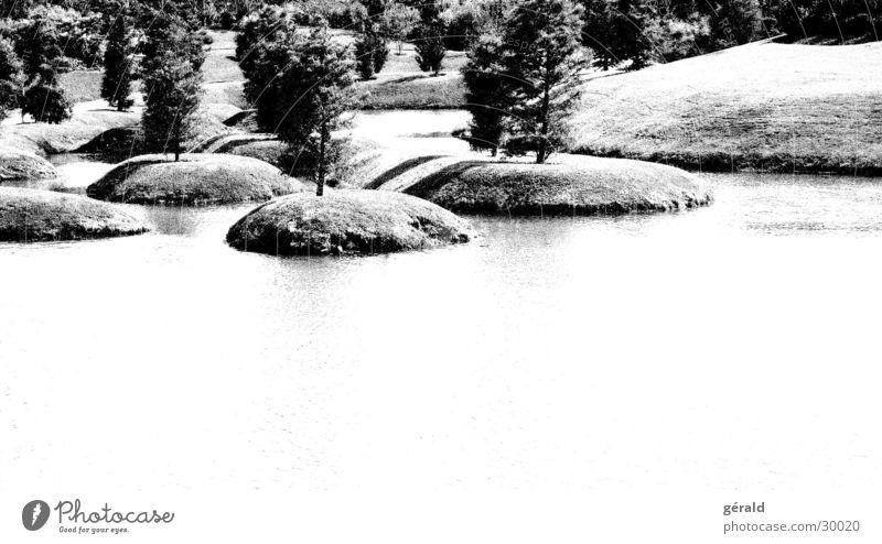 Schwart & Weiß Natur 4 Wasser weiß Baum Gras Garten grau See Insel Rasen Hügel Japan