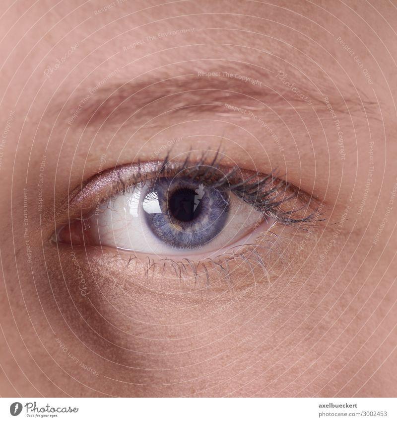 weibliches blaues Auge schön Kosmetik Schminke Wimperntusche Gesundheit Mensch feminin Junge Frau Jugendliche Erwachsene 1 18-30 Jahre Blick blaue augen