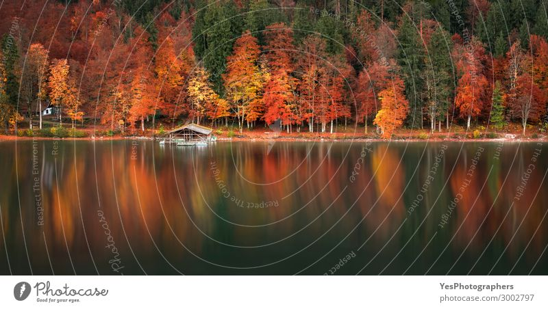 Herbstliche Wald- und Wasserspiegelung Panoramablick ruhig Ferien & Urlaub & Reisen Umwelt Natur Landschaft Baum Blatt See Holz grün rot Farbe Deutschland