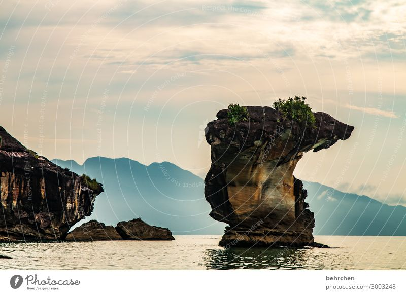 kobrakopf Himmel Ferien & Urlaub & Reisen Natur Landschaft Meer Ferne Berge u. Gebirge Umwelt Küste Tourismus außergewöhnlich Freiheit Felsen Ausflug Wellen