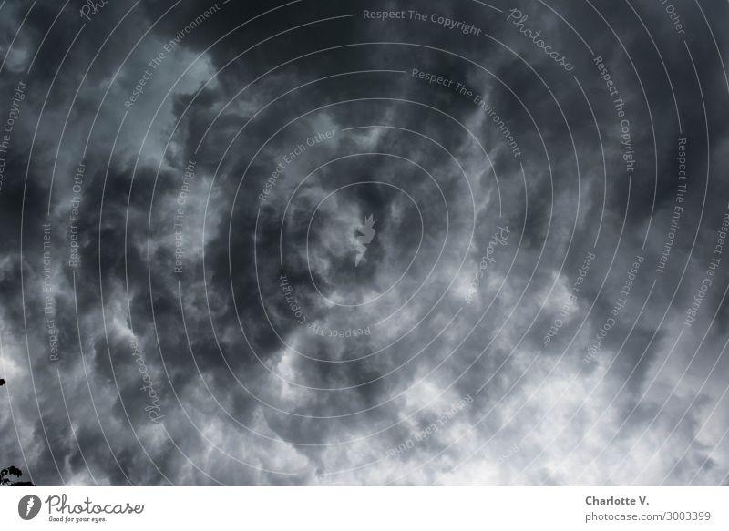 Wolkensuppe Natur dunkel grau Stimmung wild Luft fantastisch gefährlich bedrohlich Macht Urelemente Unwetter chaotisch Verzweiflung Aggression