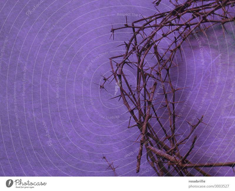 Karfreitag Fasten Ostern Zeichen Traurigkeit violett Leidenschaft Trauer Schmerz Glaube Religion & Glaube Rettung Dornenkrone Krone Hälfte Christentum