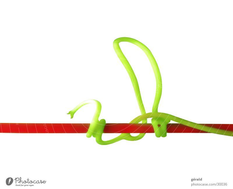 Naturgrafik 2 weiß grün Pflanze rot Stengel Grafik u. Illustration