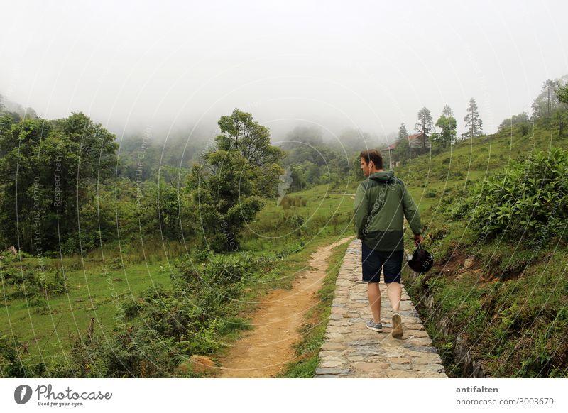 Alles so schön grün hier Mensch Ferien & Urlaub & Reisen Natur Mann Pflanze Landschaft Wolken Wald Ferne Erwachsene Leben Wege & Pfade Tourismus Freiheit gehen