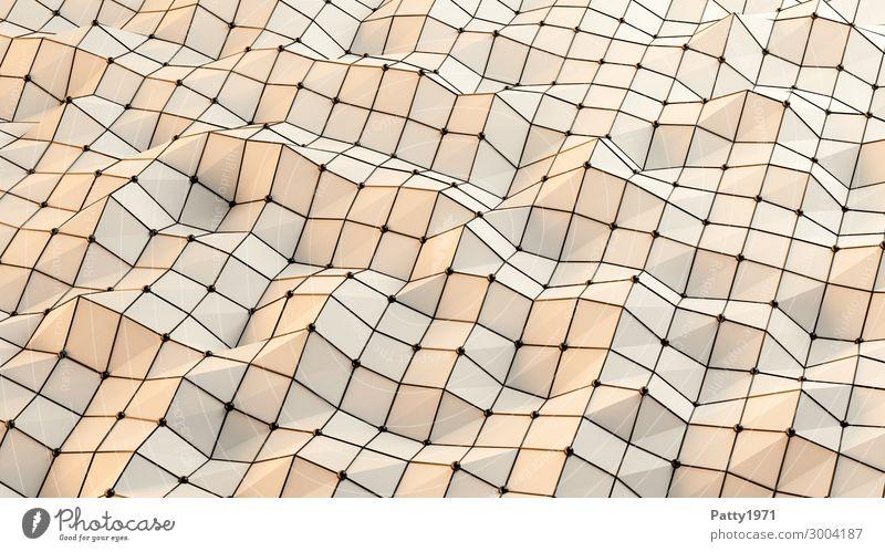 Wireframe - 3D Render Technik & Technologie Netz Netzwerk Drahtgitter Strukturen & Formen Oberflächenstruktur eckig modern braun schwarz Bewegung bizarr komplex