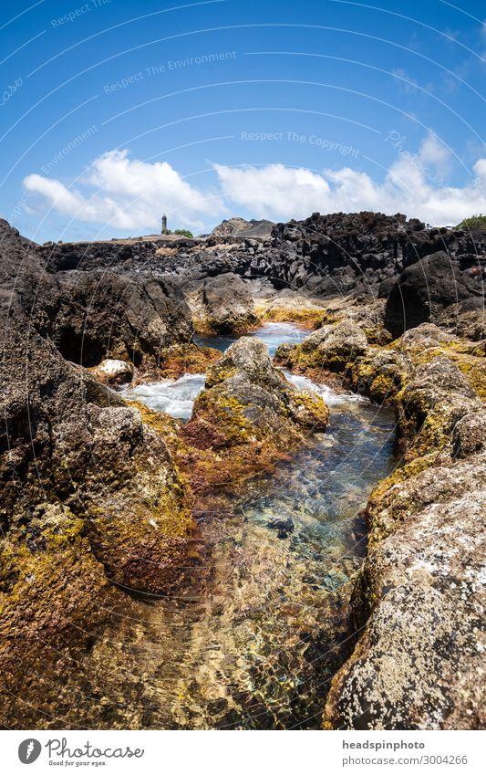 Vulkanische Küstenlandschaft von Faial mit Leuchtturm, Azoren Ferien & Urlaub & Reisen Tourismus Ausflug Sommer Strand Meer Wellen Landschaft Urelemente Wasser