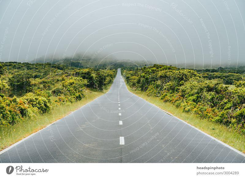 On the road to nowhere, Pico, Azoren, Portugal Ferien & Urlaub & Reisen Tourismus Ausflug Abenteuer Ferne Freiheit Umwelt Landschaft Gewitterwolken