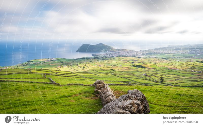 Felder, Wiesen & Felsenküste, Soa Miguel, Azoren, Portugal ruhig Ferien & Urlaub & Reisen Tourismus Ausflug Freiheit wandern Natur Landschaft Wolken Sommer Gras