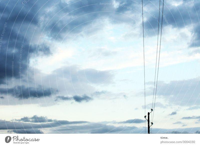 Draht nach oben Energiewirtschaft Hochspannungsleitung Stromtransport Natur Luft Himmel Wolken Schönes Wetter blau Kraft Zusammensein Verantwortung Ausdauer