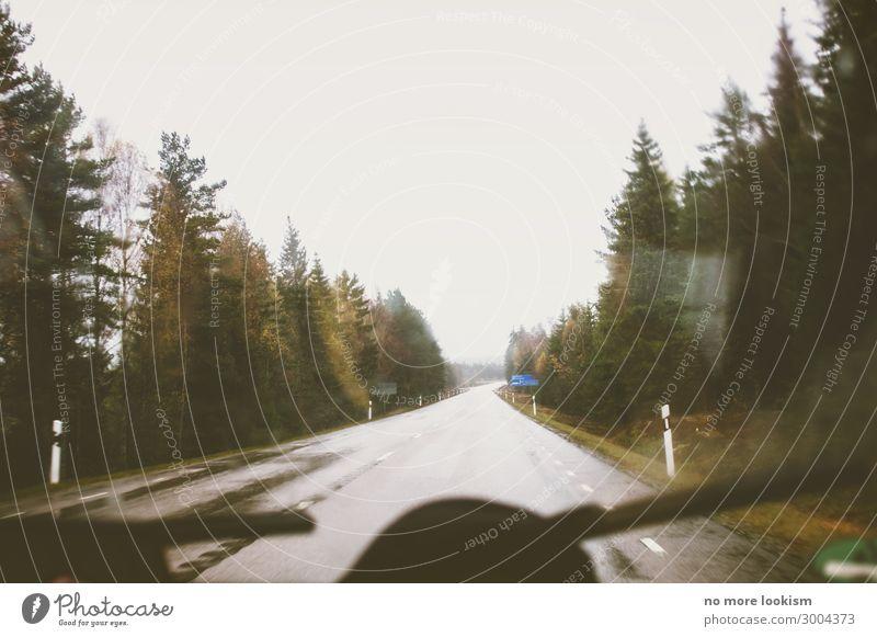 blame it on the weatherman Natur Wald Straße Umwelt Regen PKW Verkehr trist nass Unwetter Verkehrswege gemütlich Gewitter Autofahren Klimawandel Wildnis