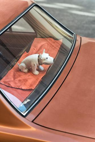 Wackel-Dog Hund alt Tier braun PKW Metall Verkehr trist niedlich Kunststoff Kitsch trendy Figur trashig Fahrzeug Autofahren