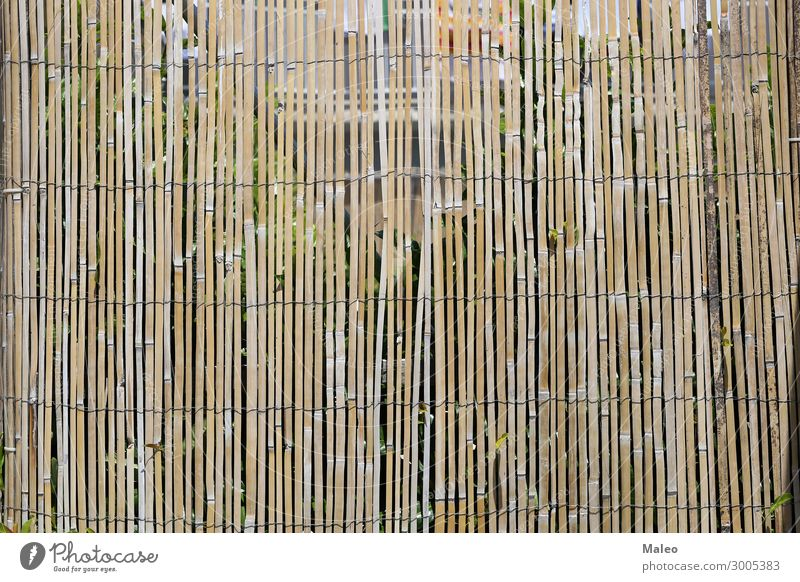 Zaun aus Bambusstöcken Draht Bambusrohr Ast braun Design Detailaufnahme Garten Natur natürlich Muster Stock Tradition Holz abstrakt Barriere Holzbrett Sträucher