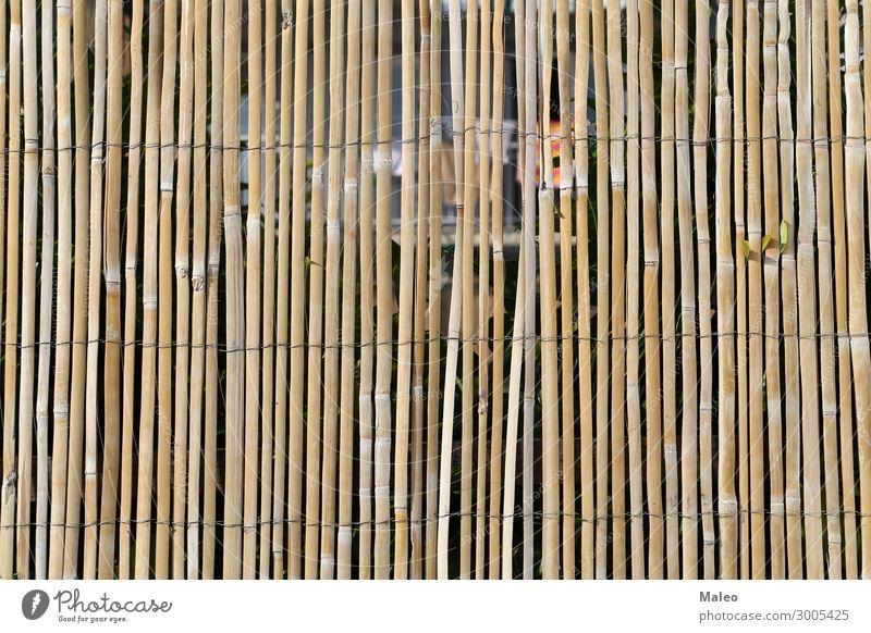 Zaun aus Bambusstöcken Draht Bambusrohr Ast braun Design Detailaufnahme Garten Natur Muster Stock Tradition Holz abstrakt Barriere brett Streichholz Halm Bündel