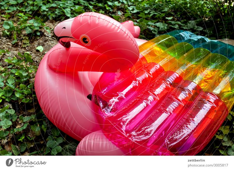 Flamingo Gummi Badeente Gummitier Spielzeug Kunststoff Schwimmen & Baden Schwimmhilfe rot rosa mädchenspielzeug Sommer Menschenleer Textfreiraum