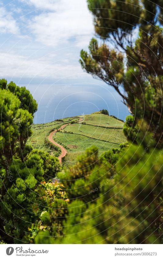 Grüne Hügellandschaft und Meer auf der Insel Soa Jorge, Azoren Ferien & Urlaub & Reisen Tourismus Ausflug Abenteuer Ferne Freiheit Expedition Umwelt Natur