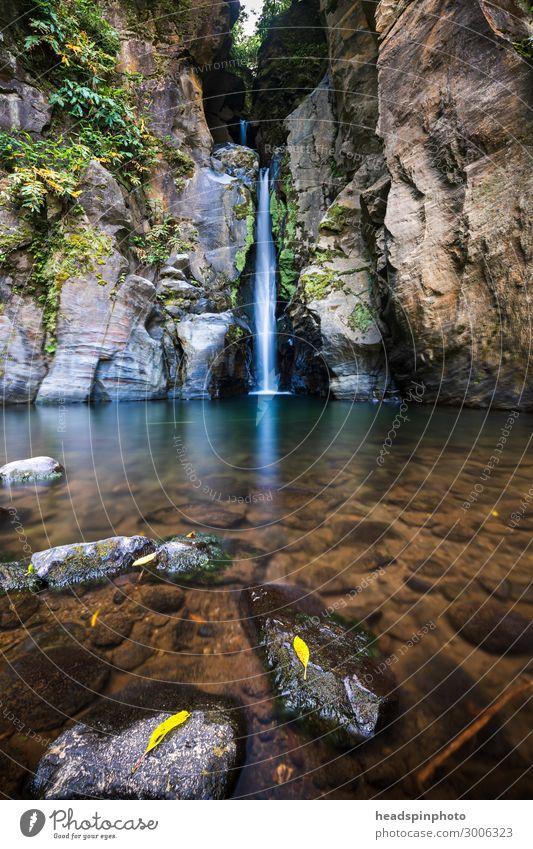 Malerischer Wasserfall mit glasklarem Wasser & Laub, Azoren Umwelt Natur Landschaft Pflanze Urelemente Sommer Herbst Urwald Felsen Schlucht Insel sao miguel