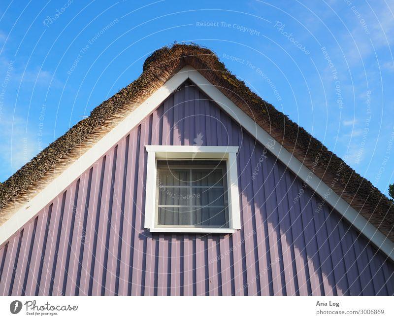 Farbspiel Wolken Sommer Zingst Deutschland Europa Dorf Menschenleer Haus Bauwerk Gebäude Architektur Fassade Fenster Dach Farbe Ferien & Urlaub & Reisen