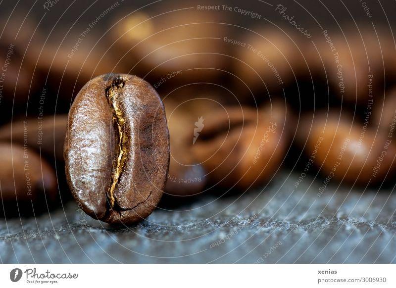 Makroaufnahme: Eine Kaffeebohne steht aufrecht Kaffeebohnen Lebensmittel Kaffeetrinken Bioprodukte Heißgetränk Latte Macchiato Espresso Duft braun grau