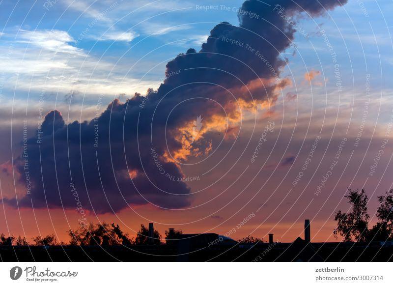 Große Wolke Himmel Himmel (Jenseits) Wolken Kumulus Regenwolken Wetter Klima Klimawandel Wetterumschwung Meteorologie Horizont Skyline Häusliches Leben