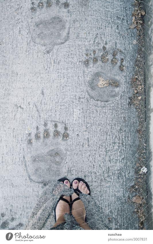 in wess' fußstapfen ich tret' Fußspur Füße Abdruck Bär Eisbär Frau Flipflops Wege & Pfade Nachfolge nachfolgen in Fußstapfen treten vergleichen Größenvergleich