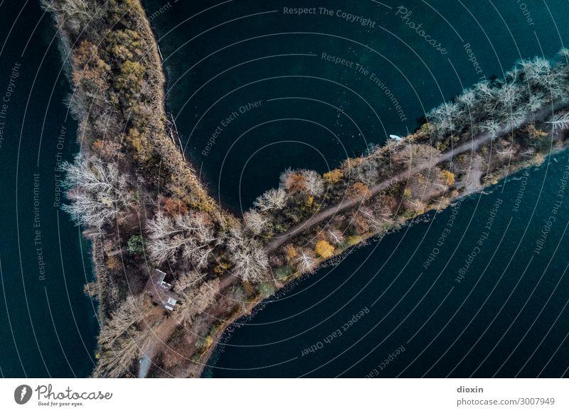 luftig | (e) Perspektive Umwelt Natur Landschaft Pflanze Urelemente Erde Wasser Baum Wellen Seeufer Flussufer Baggersee Altrhein Rhein nass natürlich verbinden