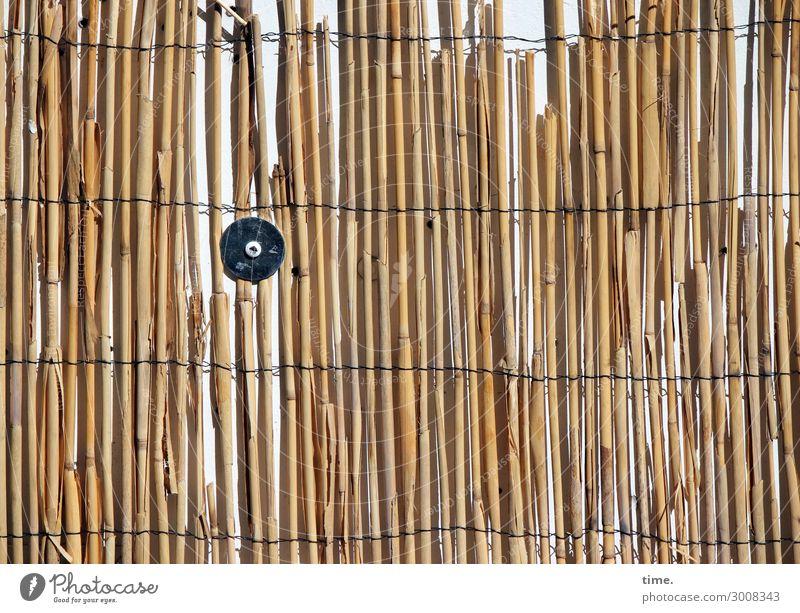 längs quer rund Mauer Wand Schraube Scheibe Schilfrohr Matten Draht netzartig befestigen Linie Streifen Netzwerk festhalten trashig braun gelb Sicherheit Schutz