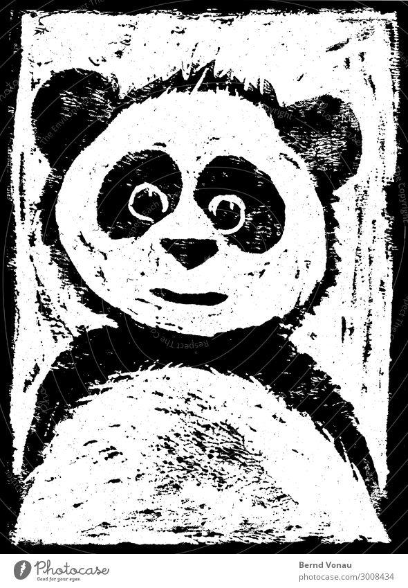 bambusbjörn Tier 1 Blick Panda illustrieren Zeichnung Holzschnitt Lächeln Freundlichkeit Auge Fell schwarzweiss Schwarzweißfoto abstrakt Kontrast