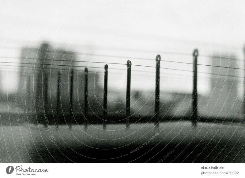Berliner Zäune Zaun Sicherheit Taube grau gefangen Stadt Draht Überwachung Unschärfe Elektrizität obskur Schwarzweißfoto Taubenschutz Angst