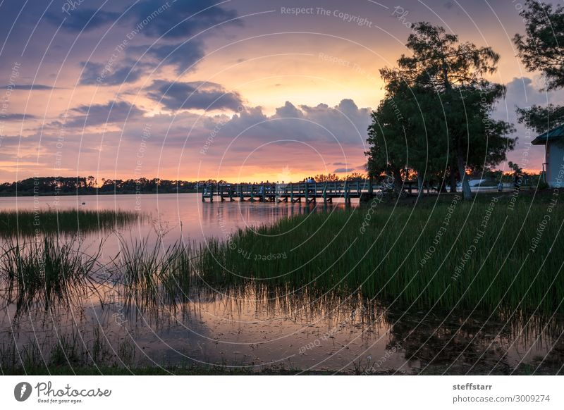 Sonnenuntergang über dem Sugden Regional Park in Naples, Florida schön Erholung ruhig Natur Landschaft Sonnenaufgang Teich Brücke blau gelb orange rosa