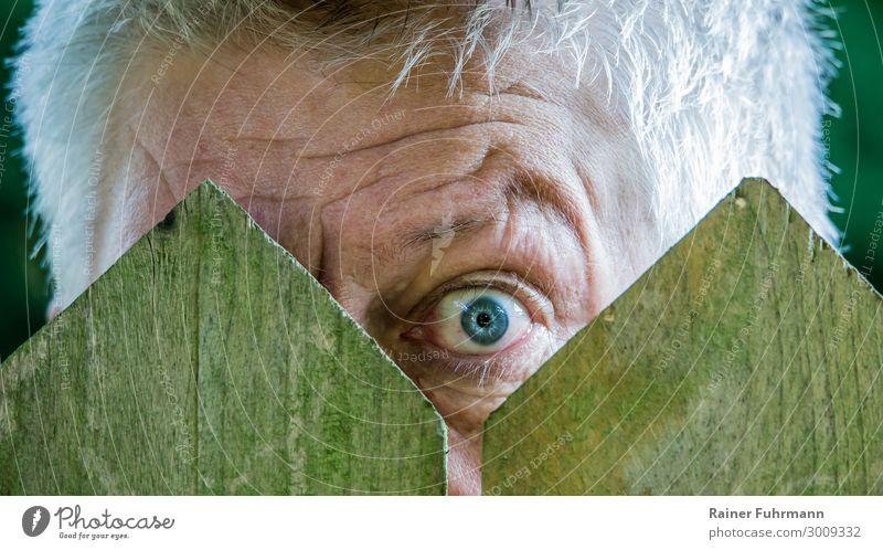 ein neugieriger Nachbar schaut durch einen Lattenzaun Neugier Neugierde Blick Außenaufnahme Tag Mensch Zaun beobachten Strohhut Blick in die Kamera Porträt