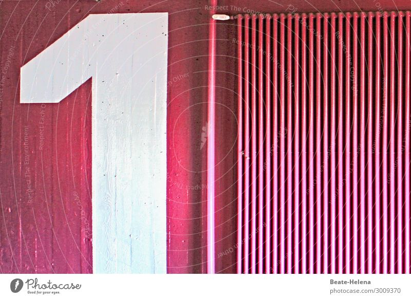Pinke Eins Lifestyle Stil Design Freude Freizeit & Hobby streichen Häusliches Leben Wohnung Haus Renovieren Innenarchitektur Dekoration & Verzierung Künstler