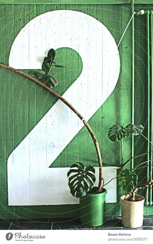 Grüne Zwei Lifestyle Stil Design Freude Freizeit & Hobby streichen Häusliches Leben Wohnung Haus Renovieren Innenarchitektur Dekoration & Verzierung Künstler