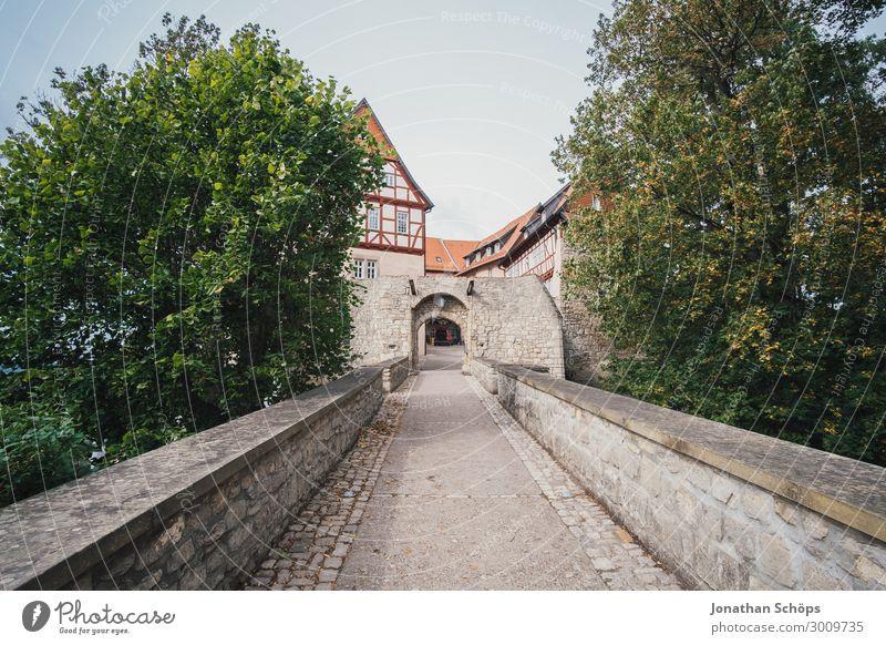 lange Brücke zur Burg Baum Haus Reisefotografie Architektur Wege & Pfade Gebäude Deutschland wandern ästhetisch Abenteuer historisch Ziel Altstadt