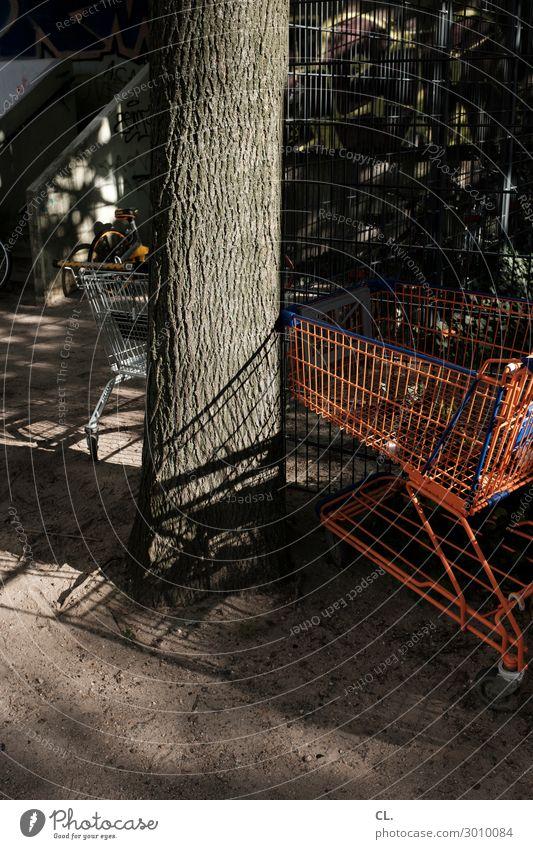 einkaufswagen kaufen Schönes Wetter Baum Einkaufswagen Handel Güterverkehr & Logistik Supermarkt Einkaufszone Einkaufscenter Farbfoto Außenaufnahme Menschenleer