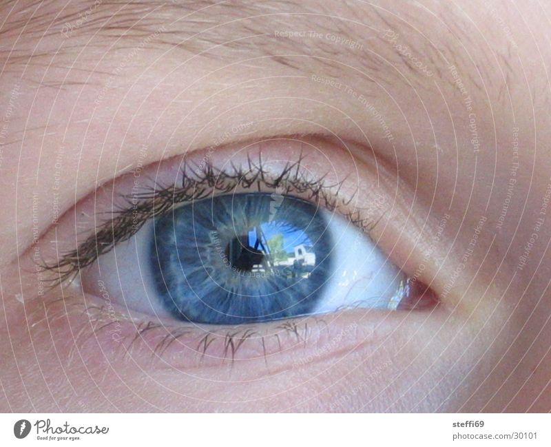 Augenspiegelung Reflexion & Spiegelung Wimpern Pupille Kinderaugen Mensch blaue Augen Nahaufnahme