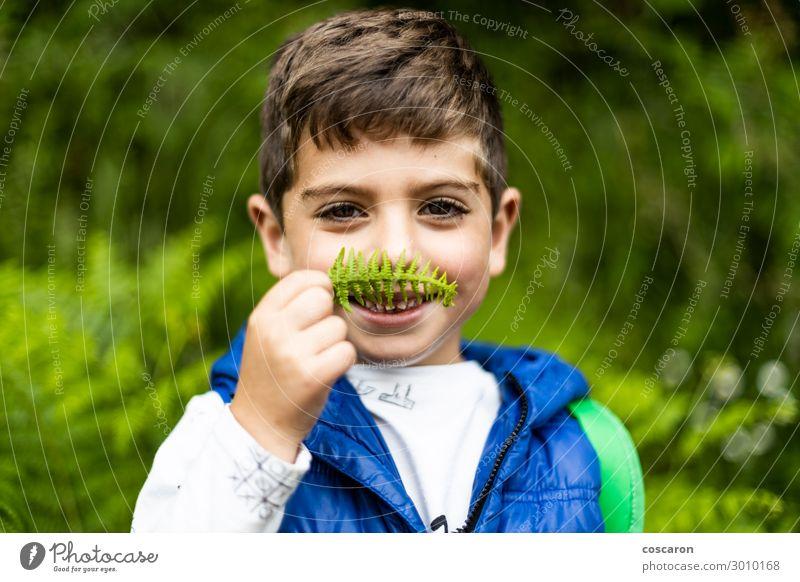 Kind Mensch Ferien & Urlaub & Reisen Natur Sommer Pflanze blau schön grün weiß Landschaft Freude Wald Berge u. Gebirge Lifestyle natürlich