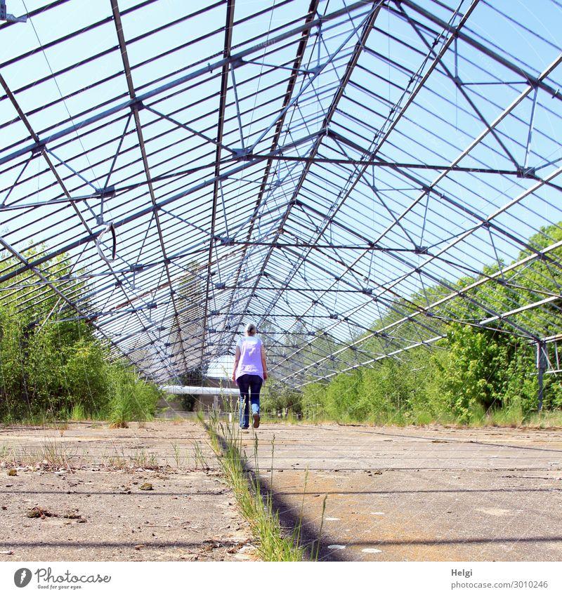 luftig | unterwegs im Gewächshaus Frau Mensch grün Architektur Erwachsene Senior feminin Gras außergewöhnlich braun gehen Metall Wachstum 60 und älter stehen