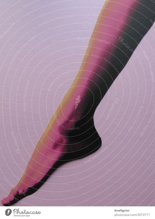 Graziös Frau Mensch nackt Farbe schön Erotik Beine Erwachsene gelb feminin Gefühle Fuß rosa ästhetisch violett sportlich