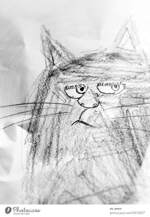 Grumpy Cat zeichnen Katze Tiergesicht Schreibwaren Papier Zettel Schreibstift Blick authentisch frech einzigartig listig lustig rebellisch grau schwarz weiß