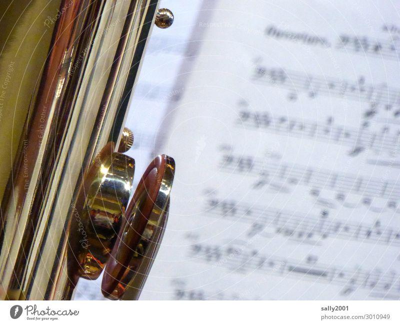 große Klappe... Musik Konzert Orchester Musiknoten Blasinstrumente Blechblasinstrumente Tuba Bassschlüssel Spielen ästhetisch außergewöhnlich glänzend gold