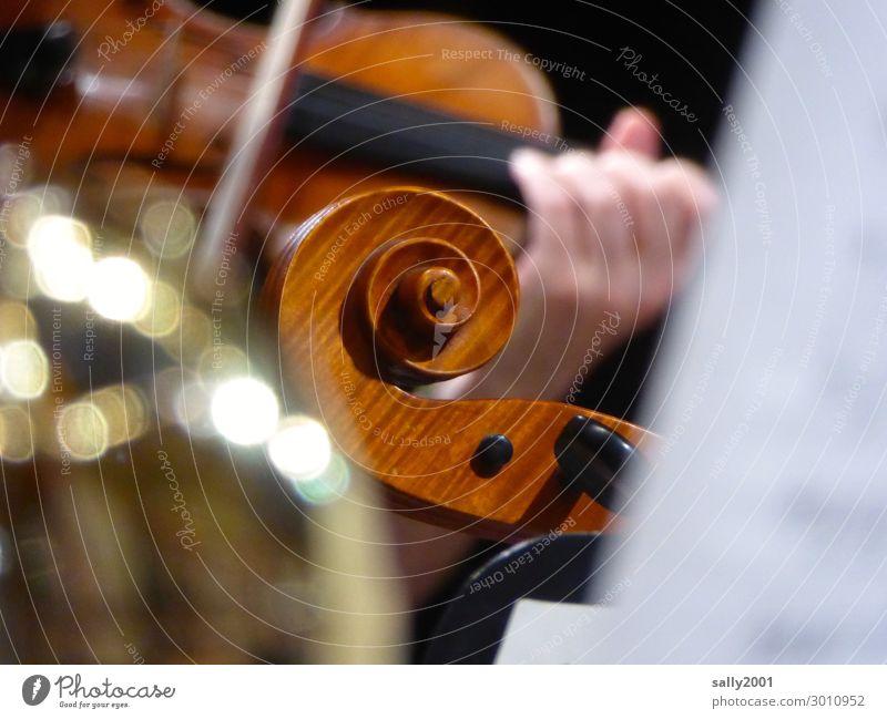 lebensnotwendig | Musik... Orchester Geige Violine Geigenschnecke Wirbel spielen musizieren gemeinsam Zusammenhalt geigen Geige spielen Konzert Musikinstrument