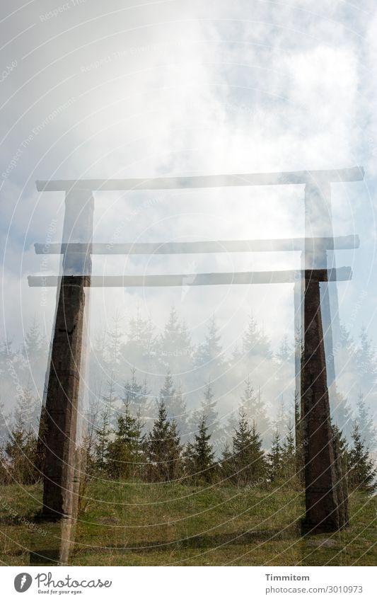 luftig | aber nicht lustig Himmel Natur blau grün weiß Landschaft Wolken Wald dunkel schwarz Holz Umwelt Gefühle Stein braun warten