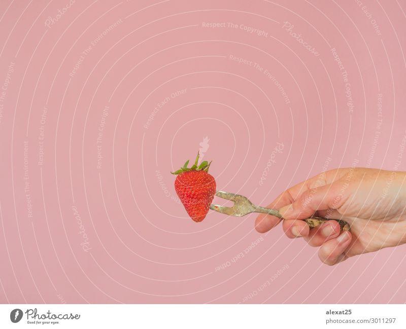 Frau Mensch Natur Sommer Farbe schön grün rot Hand Erwachsene Textfreiraum rosa Frucht frisch Fotografie lecker